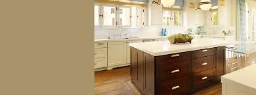 kitchen ideas u0026 planning kitchen kohler