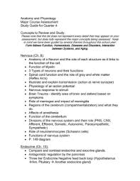 Anatomy And Physiology Lab Practical 2 Lab Practical 2 Review Sheet