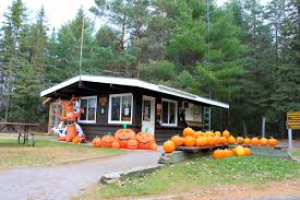 party rock house halloween halloween 2016 at ontario parks parks blog