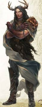 druidic robes 174 best druid characters images on character