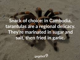 eww read more food traditions around the world