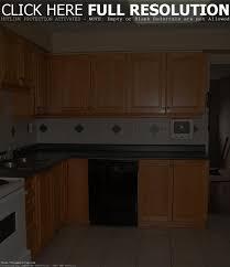 cabinet simple kitchen cabinet design contemporary simple