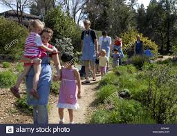 calif native plants passerbys stroll through the california native plants section of