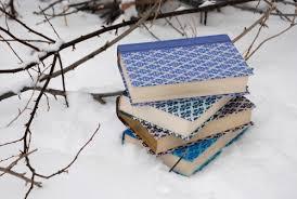 books winter invierno winter and books winter
