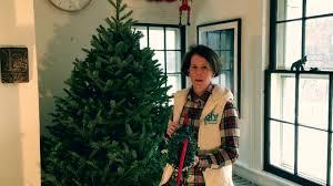 how to hang lights on a christmas tree my go to christmas tree and how to hang lights