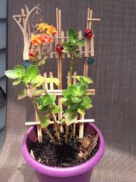 houseplant trellis houseplant trellis for plant support with ladybugs