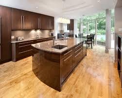 Dark Wood Floor Kitchen by Dark Cabinets Light Floor Houzz