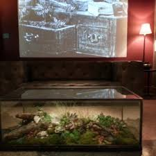 furniture extraordinary terrarium coffee table for your home