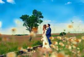 Photography Wedding 18 In Blacktown Area Nsw Services For Hire Gumtree Australia