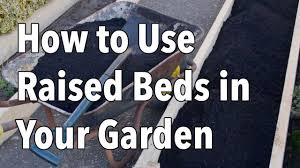 how to use raised beds in your garden raised bed gardening youtube