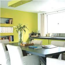 cuisine verte et marron peinture cuisine vert anis 2017 avec mur jaune et gris