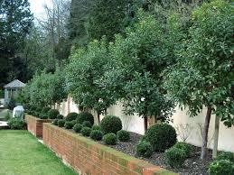 raised flower beds beautiful but low maintenance planting loving