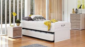 Trundle Bed Definition Kiwi King Single Trundle Bed By Englander Harvey Norman New Zealand