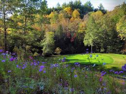 crossville tn golf resort dorchester golf club in fairfield glade tennessee usa golf advisor