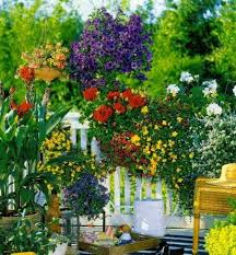 Garden Flowers Ideas 55 Balcony Greenery Ideas Choose Flowers For Balcony And Arrange