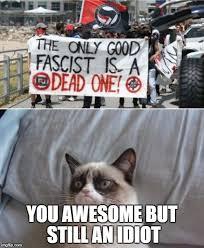 Grumpy Cat Meme Creator - grumpy cat vs antifa meme generator imgflip grumpy cat