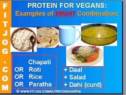 protein in grains and protein rich indian food for vegetarians
