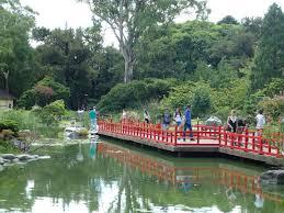 suitcase and world a bit of japanese greenery jardín japonés de