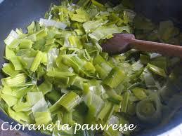 cuisiner les verts de poireaux gratin de poireau sauce tomate la cuisine de quat sous
