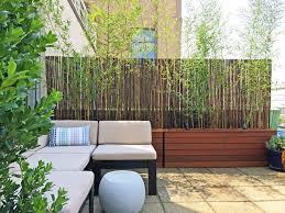 balkon bambus sichtschutz wohndesign hypnotisierend sonnenschutz balkon plant p 34 279 big
