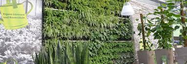 vertical garden a vertical garden in a german restaurant vertiss