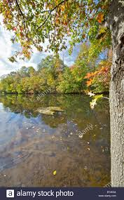 r aration canap autumn colors on the delaware and raritan canal d r canal stock
