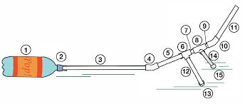 Sewing Machine Parts Diagram Worksheet Diagram Of The Eye For Kids To Label Database Wiring Diagram