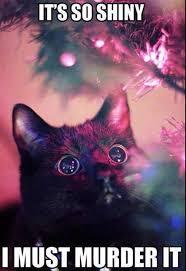best 25 christmas animals ideas on pinterest christmas pets