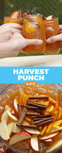 Halloween Block Party Ideas by Best 25 Harvest Party Ideas On Pinterest Fall Harvest Party