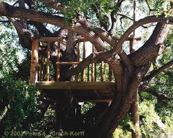 Backyard Play Forts by 56 Best House A Magic Fort In The Backyard Images On Pinterest