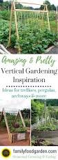amazing vertical gardening ideas