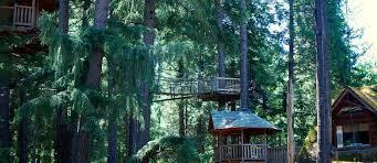 america u0027s best treehouse hotels roadtrippers