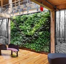 suite plants plant walls for any space