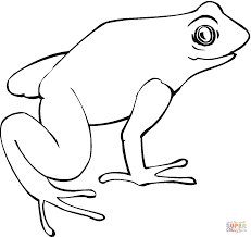 sheet coloring pages draw kids ijigenme frog birthday