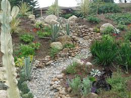 water wise john beaudry landscape design