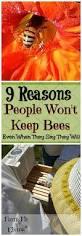 9 reasons people won u0027t keep bees beekeeping bees and raising bees