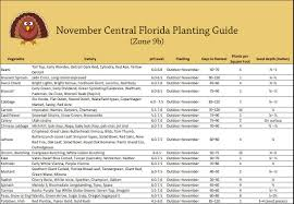 november vegetable planting guide for central florida my little