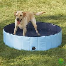 professional pet grooming tubs and bathing tubs an expert review