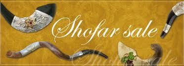 shofar horn for sale shofar for sale blowing ram horns shofar store buy blowing ram