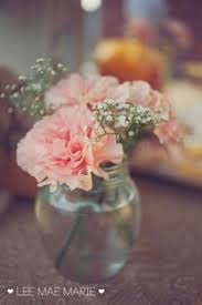 Carnation Flower Ball Centerpiece by Pink Carnation And Baby U0027s Breath Centerpieces Love It Would Add