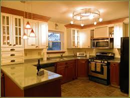 Lowes Kitchen Design by New Kitchen Cabinets Lowes Tehranway Decoration