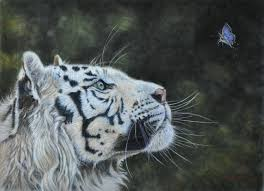 the white tiger and the butterfly painting by louise charles saarikoski