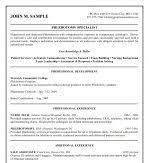 great gatsby essays corruption american dream vista on resume