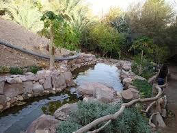 Botanical Gardens Il Botanical Garden Of Eilat 2018 All You Need To Before You