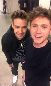 liam payne enjoys one direction reunion with niall horan daily