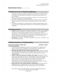 Resume Samples Server Position by Sample Resume Career Summary Free Resume Example And Writing