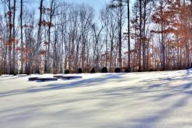 Landscaping Franklin Tn by Snow Removal Services U2013 Green Scene Irrigation U0026 Landscaping