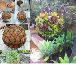 Design Your Own Home And Garden by Gorgeous Gardening Create Your Own Hanging Succulent Ball