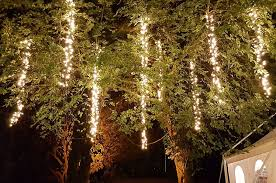 gallery lights hire catering and gazebo lights wedding