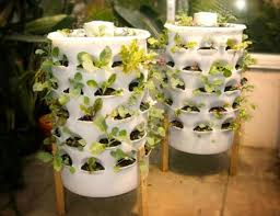 Indoor Gardening Ideas Diy Indoor Garden Ideas Photograph Diy Innovative Indoor G